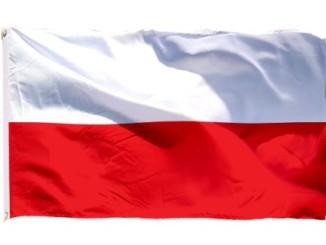 FLAGA-POLSKI-LUB-POLSKA-Z-GODLEM-90x150cm-NA-MASZT
