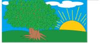 drzewo Alicja