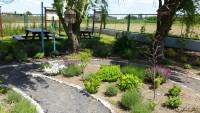 szkolny ogródek